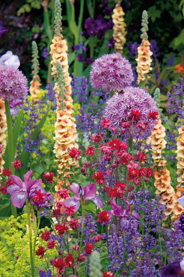 Na záhonech na venkově by rozhodně neměly chybět květiny – letničky, trvalky či cibuloviny. Neměly by být omezovány v růstu a ani by se nemělo zabraňovat jejich samovolnému rozšiřování, spíše naopak, můžete je nechat volně bujet. Také díky tomu získá venkovská zahrada své typické kouzlo.