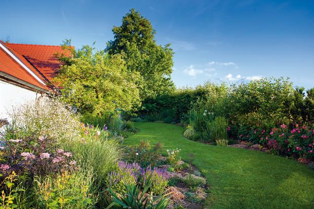 Na západní straně domu se jako široká travnatá cesta vine zahradou křivka trávníku. Po obou stranách je bohatě lemovaná trvalkovými výsadbami. Foto: Jiří Tvaroh