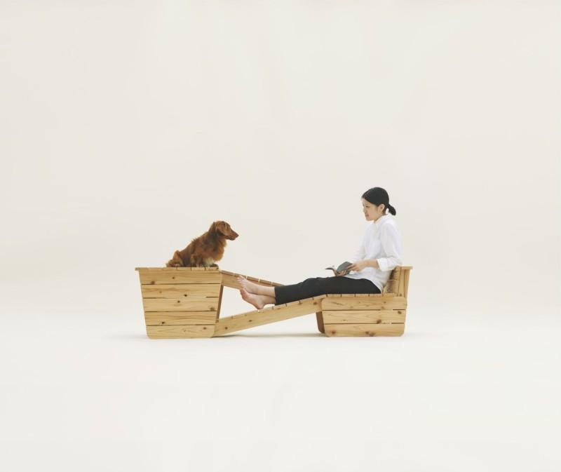 Bláznivá psí bouda