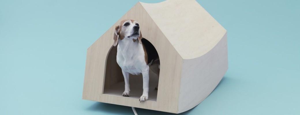 Bláznivé psí boudy od světových architektů
