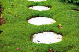 Zahradní chodníky a cestičky