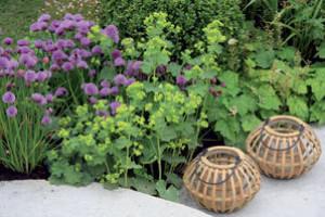Ekologická zahrada pro dva ve městě