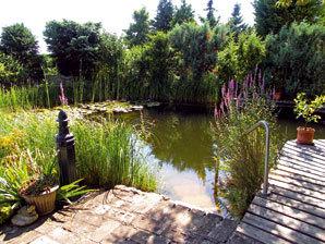 4 tipy, které prospějí vzhledu a zjednoduší údržbu vaší zahrady