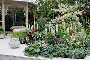 Vyzdobte si altány a pergoly květinami