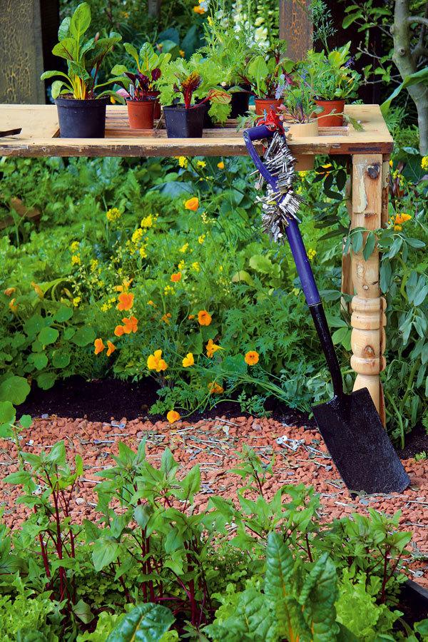 Recyklovaná zahrada k snědku