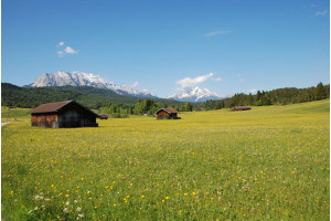 Celoroční bydlení na chatě aneb i v přírode se dá žít natrvalo