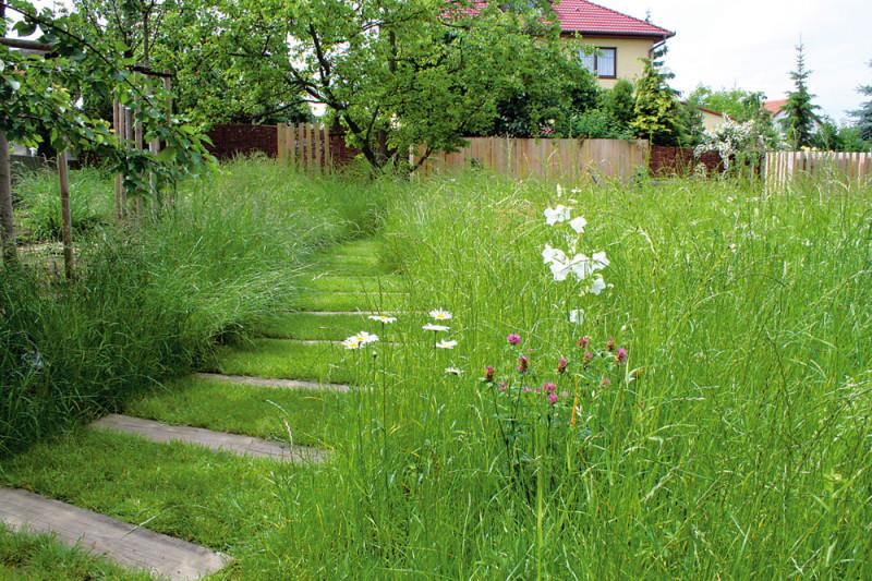 Když se rozhodnete ponechat přechody mezi pěšinou a trávníkem jen tak, je nutné věnovat se pravidelně jejich údržbě. Foto: Flera