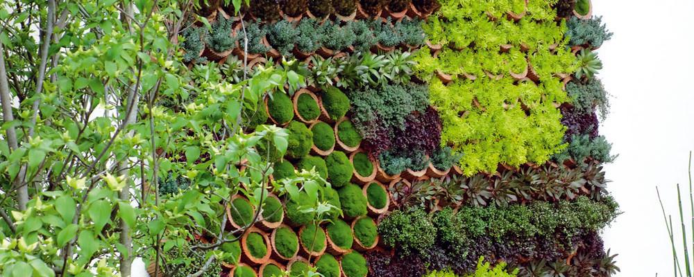 Zahradní trendy 2013