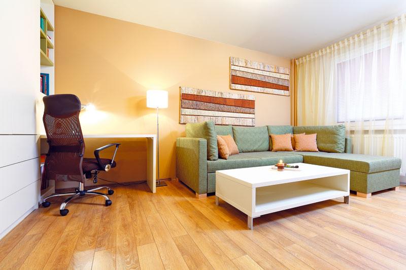Jediný pokoj musí být přes den pracovnou, večer obývacím pokojem a v noci ložnicí. Navíc měl poskytnout dostatek odkládacích prostor. Požadavkem majitelky byla také teplá a decentní přírodní barevnost. Designérka vycházela při volbě barev z laminátové podlahy, která je napodobeninou klasické dubové – k ní ladila odstíny zelené, bordó a béžové.   FOTO: Dano Veselský