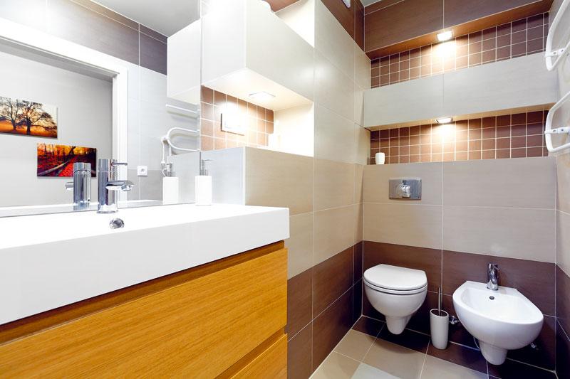 Niky mají několik výhod: jednoduchou koupelnu oživily, lze na ně uložit různé drobnosti, které potřebujete mít na dosah, a skryly svislá vedení ve stupačce. Přístup do stupačky je za jednou z obkládaček, která drží na místě díky magnetům a kovovému rámu.  FOTO: Dano Veselský