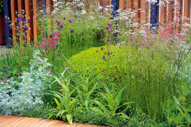 Na první pohled působí skladba rostlin přirozeně až bezúdržbově. Při výsadbě byly skutečně použity kultivary divoce rostoucích druhů. Bez pravidelné péče se však zahrada neobejde. Foto: Daniel Košťál