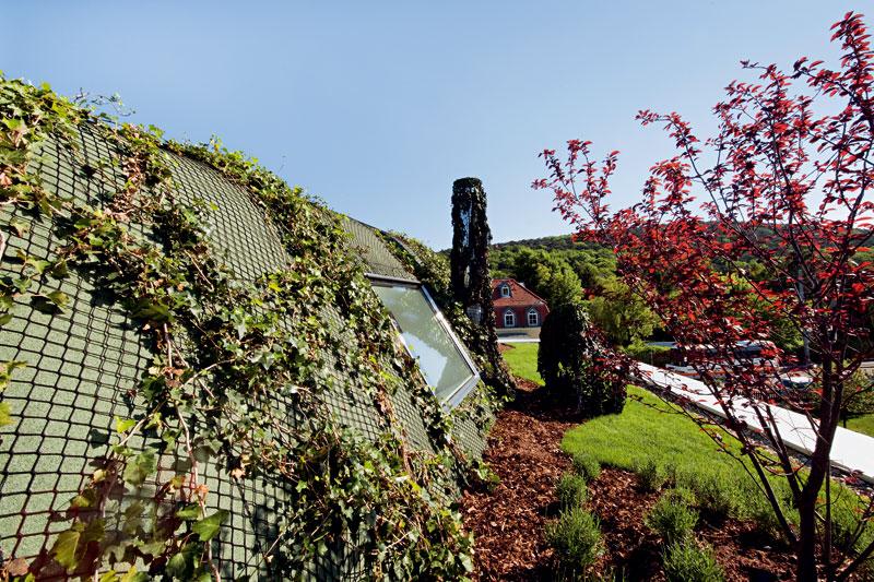 Architekti si dali záležet takéna řešení střechy, přičemž mysleli i na její obytnou funkci. Neslouží jen jako ochrana domu, ale je i rozšířením zahrady súžasným výhledem do okolí – protože dům stojí večtvrti bohaté na zeleň, je se ze střešní terasy na co dívat. FOTO: Hertha Hurnaus