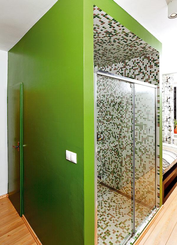 Zelená olejová barva se jako jediná věc nezdála stavbařům a snažili se majitelku přesvědčit, že když ji nanesou, už se nebude dát ničím jiným přetřít. Ale neustoupila. Vždyť barva je maximálně praktická, nešpiní se, neotírá a dá se umýt. FOTO: DANO VESELSKÝ