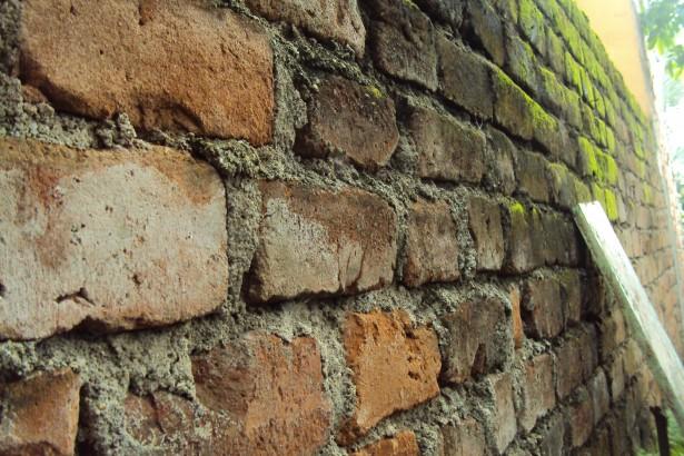 Vlhká stěna
