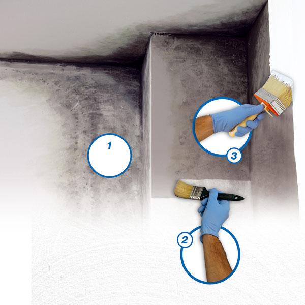 Odstranění plísní a ošetření fasády: 1. čistění 2. penetrace 3 finální povrchová úprava  foto: Mapei