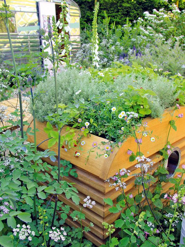 Opřírodní aromaterapii se během léta starají trvalky abylinky saromatickými květy i listy. Sem tam je možné najít i další typický prvek přírodní zahrady – lesní jahody. FOTO: DANIEL KOŠŤÁL