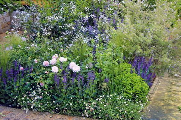 Pryšce, růže, šalvěje, bedrníky adalší trvalky rostou na přesně vymezených záhonech přísně geometrických tvarů, případně na vyvýšených záhonech. FOTO: DANIEL KOŠŤÁL