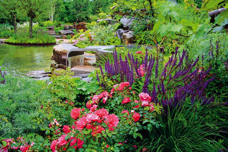 Břehy jezera jsou osazeny rozmanitou vegetací. Rostliny vybrali přesně podle podmínek, které jim zahrada nabízí.