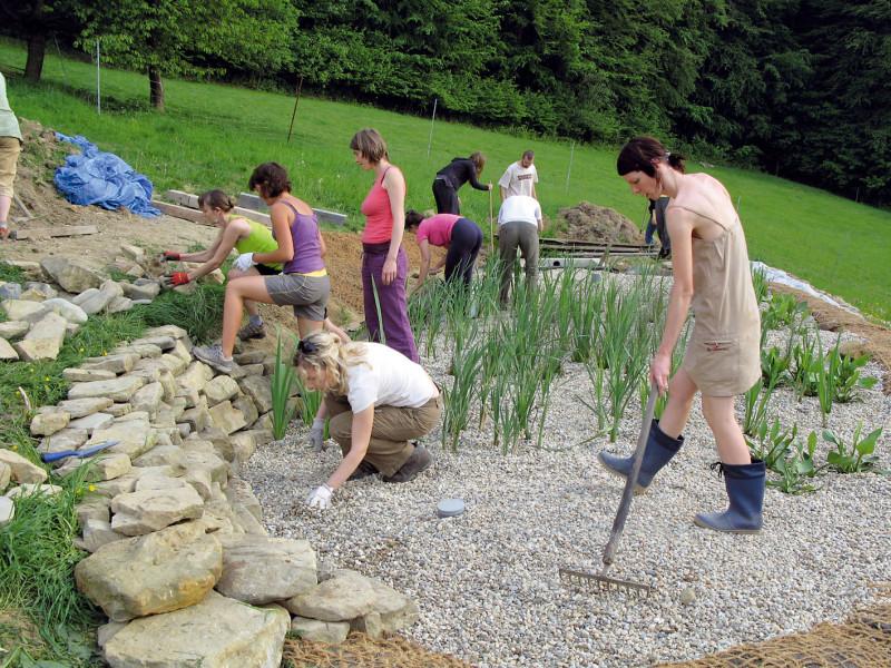 Na začátku a na konci pole, kde je potrubí, se vytváří vrstva kameniva, zbytek pole se zaveze kačírkem. Po napuštění vody se do kačírku sázejí rostliny (5ks/m2). (foto: Jana Ježíková)