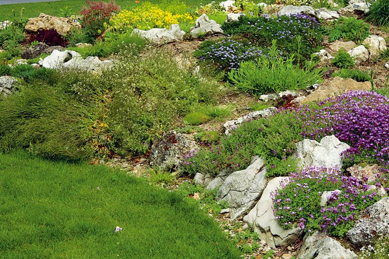 10 největších  zahradnických přešlapů