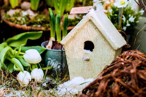 Jaro ukryté v cibulích