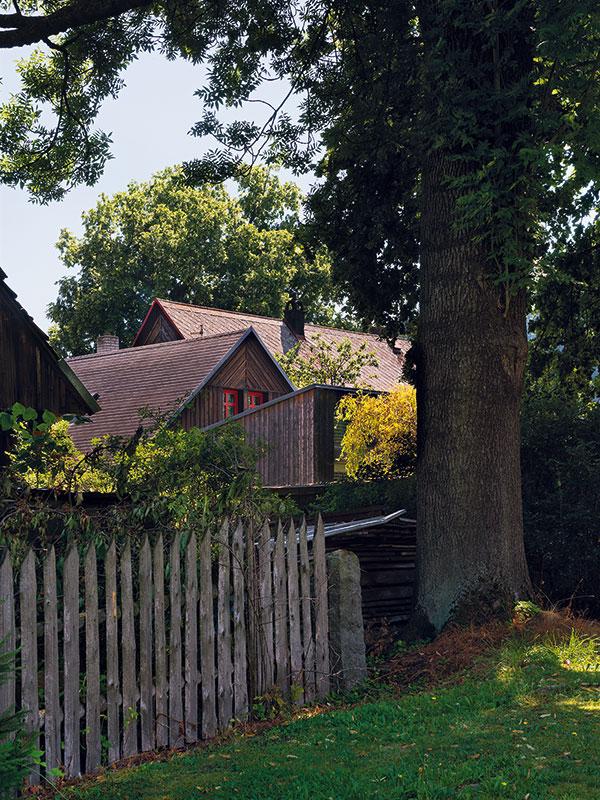 Chalupu lemují i další krásné stromy, vedle věkovité lípy i tento krásný jasan. FOTO Ester Havlová