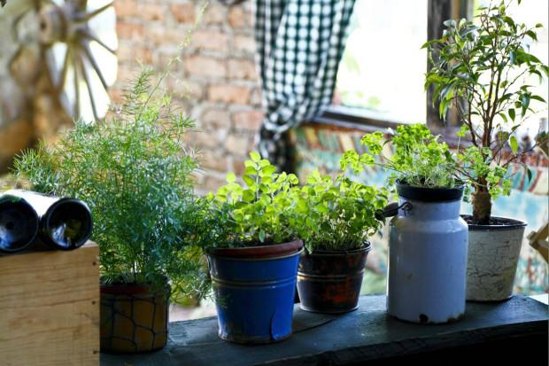 Bylinky sehrávají v kuchyňském životě velkou roli. Zasaďte je na způsob venkova a využijte tak jakékoli nádobky, které vám přijdou do rány – kyblík, konvičku, či starý popraskaný květináč.
