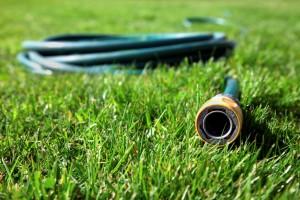 5 kroků ke krásnému a zdravému trávníku. Krok pátý − Zavlažování