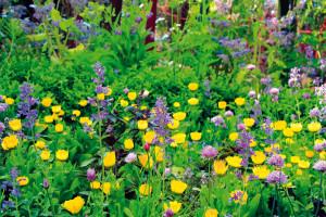 Ekologická zahrada jakoby postavená na hlavu
