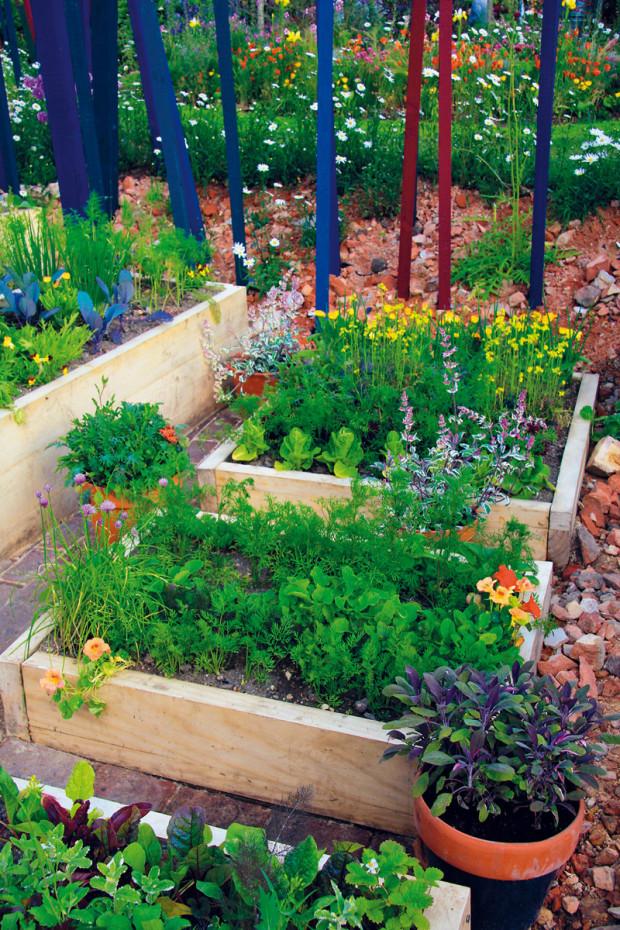 Vyvýšené záhony jsou jako stvořené na pěstování zeleniny. Základem úspěchu je – jak jinak – kompost.