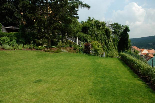 Jak zavlažovat zahradu v letních vedrech?