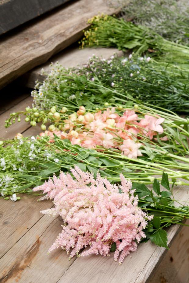 Květinám odtrhejte listy a uložte je na hromádky podle druhu.