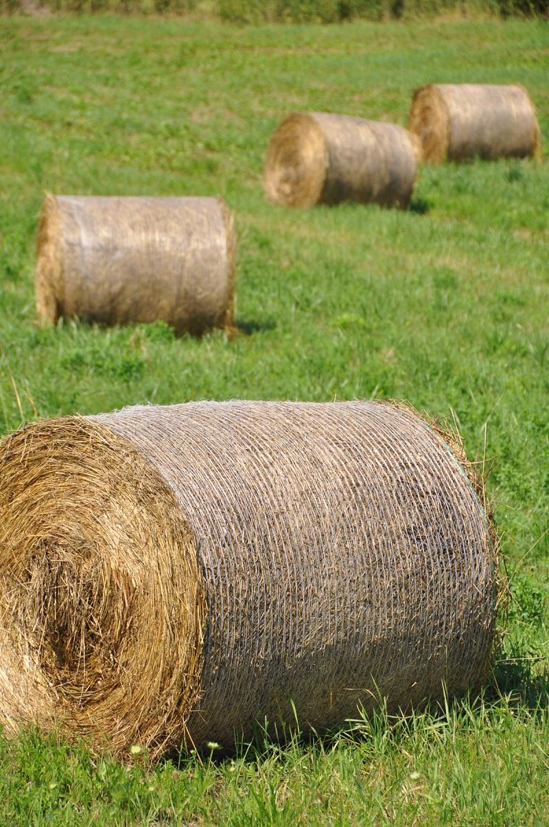 Na sekání luk s rozlohou několik hektarů je lepší použít stroj s balíkovačem.