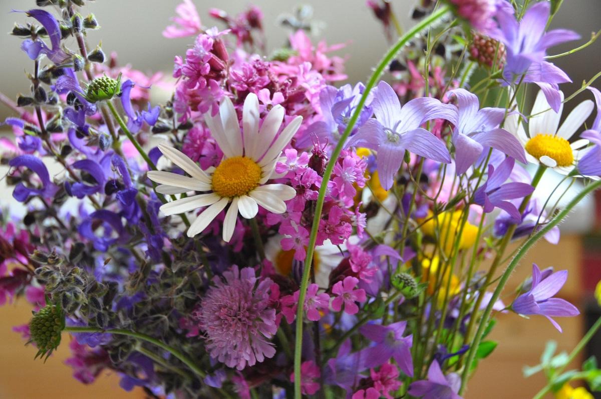 Luční květy ve váze rozehrají stůl na terase i v kuchyni či obyváku.