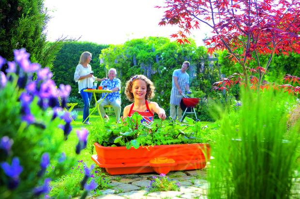 V samozavlažovacích nádobách, v nichž není nutné zalévat rostliny tak často, můžete pěstovat široké spektrum – pokojové a balkónové rostliny, letničky, trvalky, dřeviny a jehličnany menšího vzrůstu, drobné ovoce, zeleninu. Pouze suchomilné a sukulentní rostliny se k pěstování v těchto květináčích nehodí. (foto: Mountfield)