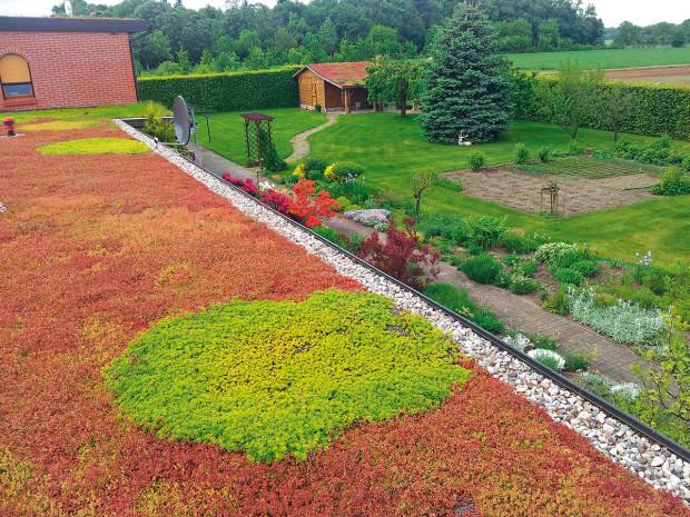 Zelená střecha Icopal se dodává už svyrostlou zelení, takže je schopná plnit svou funkci ihned po ukončení instalace.