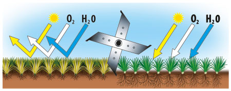 Vertikutace zbavuje půdu tzv. travní plsti (zbytky trávy, mechů, listí atp.) a umožňuje tak trávníku získávat větší přísun kyslíku.schema Mountfield