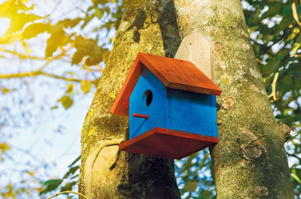 Kdůležitému vybavení biozahrad patří různé hmyzí skrýše atzv. hotely, ptačí budky, staré kmeny, kupy dřeva či kamení, díky nimž se prostor stane domovem pro už zmíněné užitečné živočichy. FOTO DANIEL KOŠŤÁL
