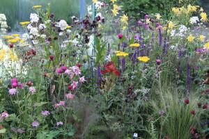 Zahrada plná svěžích novinek