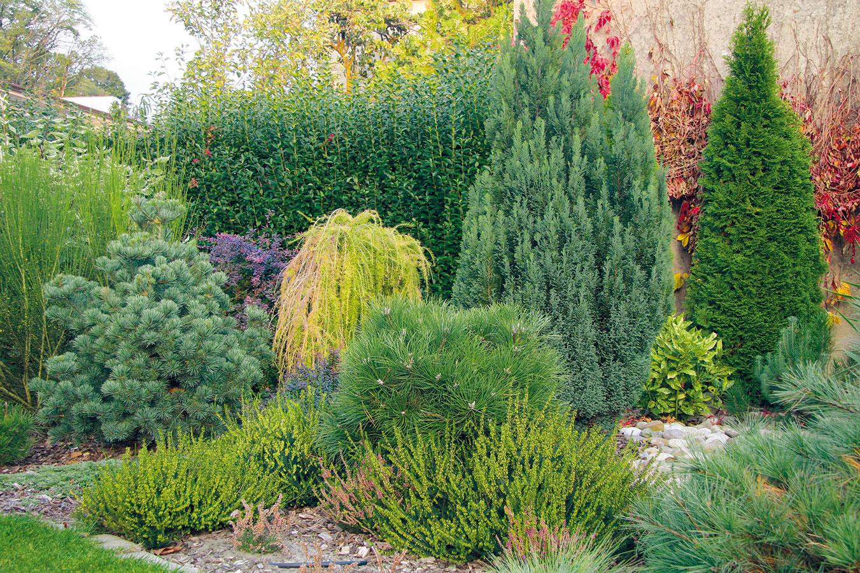 Původně užitková zahrada prošla před třemi lety kompletní proměnou