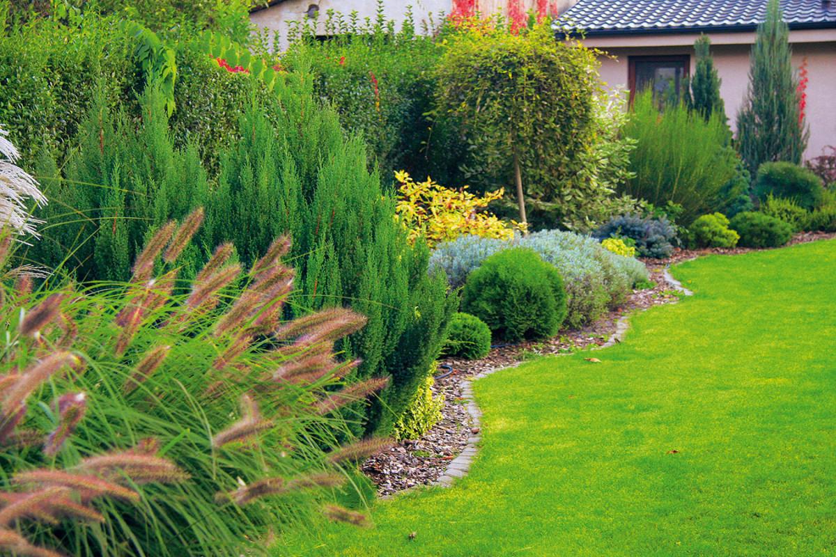 """""""Velký hustý trávník avýsadby, které by byly proměnlivé aalespoň částečně iceloročně přitažlivé, to byl náš sen. Toužili jsme, aby se zahrada během roku zajímavě vybarvovala, voněla alákala imotýly, znichž se budou radovat děti,"""" popisují své představy Monika aMarián. FOTO DANIEL KOŠŤÁL"""