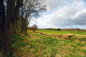 8 užitečných rad, jak vybrat pozemek