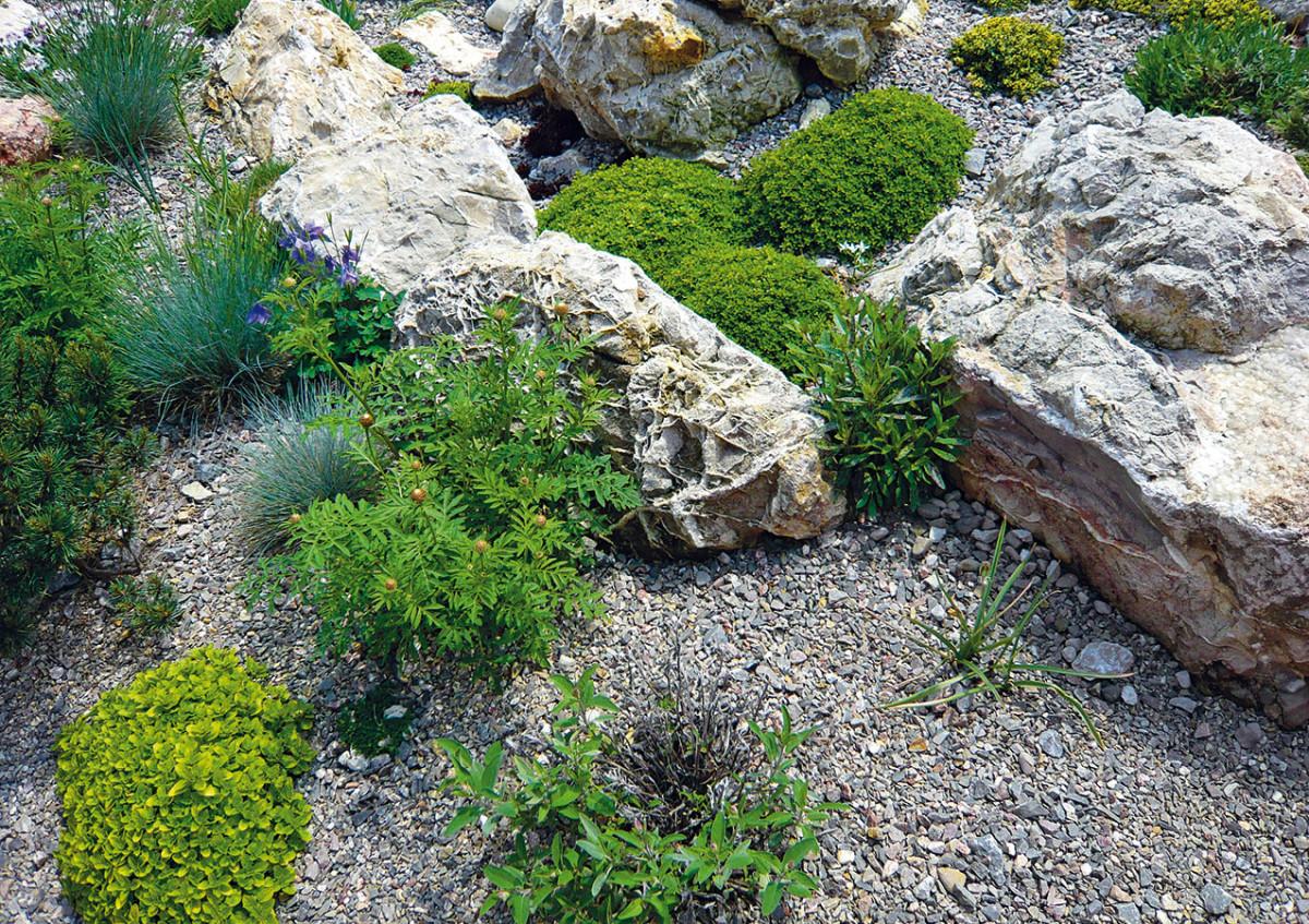 Velkou předností kamene je schopnost akumulace tepla ve vnitřní struktuře ajeho následné uvolňování do okolí při snížení teploty vzduchu. Tato funkce se nazývá sluneční past. Mnozí zahradníci ji využívají při pěstování relativně teplomilných bylinek ivchladných oblastech.