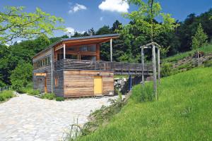 Dřevěná fasáda je pravdivým obrazem přírodní podstaty tohoto střídmého domu – jeho stěny tvoří dřevěná sloupková konstrukce sdifuzně otevřenou skladbou, izolovaná minerální vlnou. FOTO Lina Németh