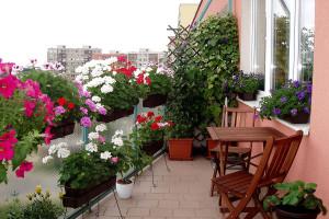 Klepete kosu na balkoně? Zbytečně, můžete tam mít léto po celý rok!