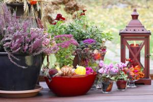 Dekorace na podzim - návrhy