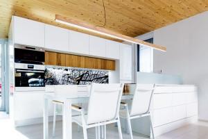Paní domu vstoupila do návrhu snad jen při řešení auspořádání kuchyně. Ostatní přináleželo rozhodnout mladému architektovi. Foto Dano Veselský