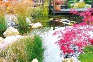 Konec sezony je ve znamení okrasných trav, zajímavých semeníků trvalek či pestře zbarvených listů dřevin. Krásné barvy do zahrady vnesou třeba asijské javory, které se uplatní jako zajímavý detail ujezírka nebo jako solitéra vtrávníku. FOTO LUCIE PEUKERTOVÁ