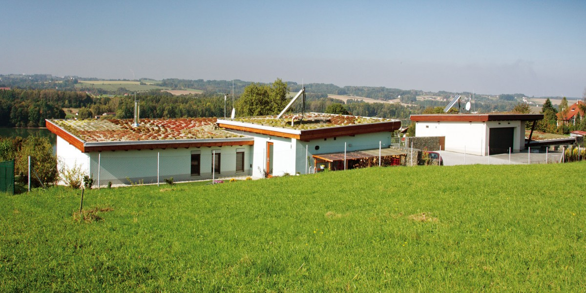 Pultové střechy nad oběma částmi domu jsou porostlé skalničkami avyspádované do zadní části pozemku. Střechy nemají okapy – voda se zadržuje ve vegetačním souvrství apřebytek volně stéká do štěrku po obvodu stavby. FOTO ROBERT ŽÁKOVIČ