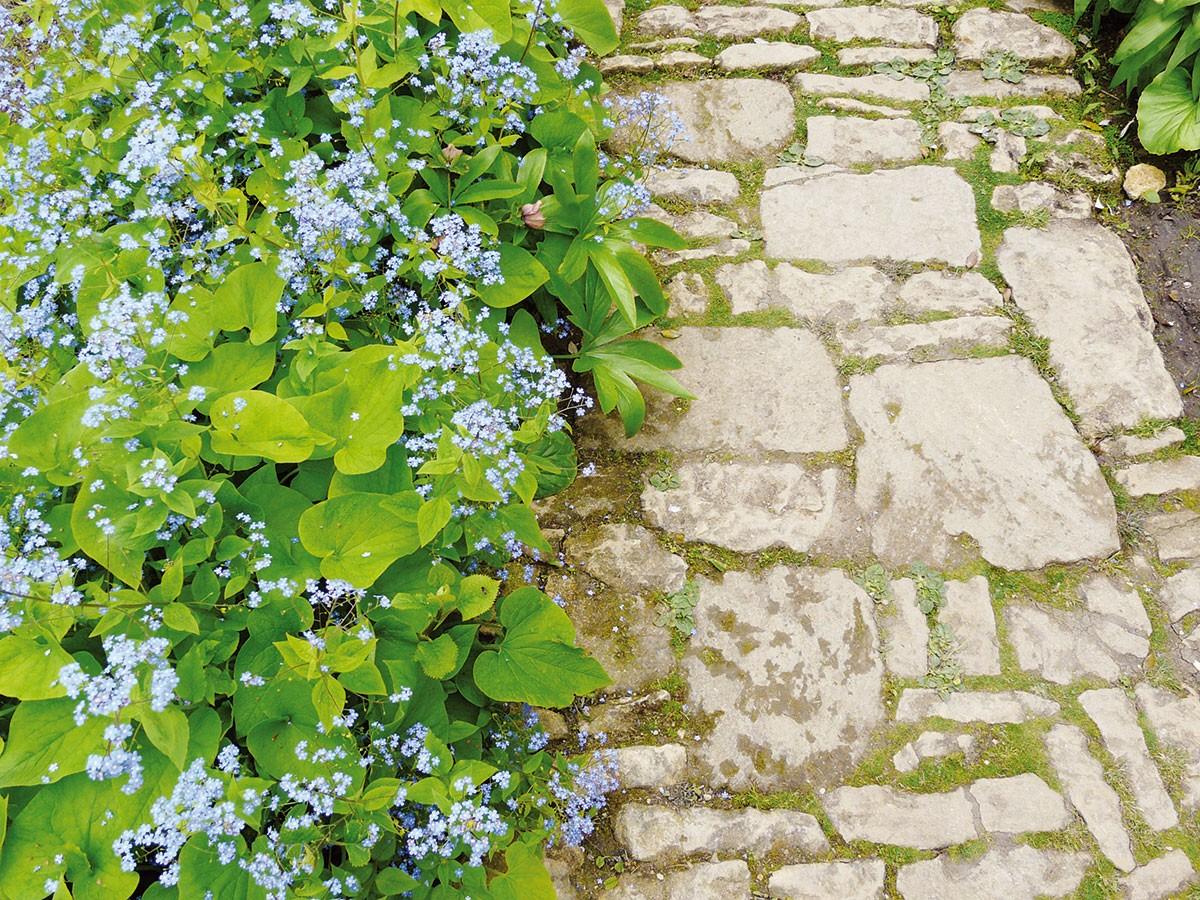 Plánování zahrady rozhodně neuspěchejte. Vprvní fázi projektování se mnohdy zapomíná na praktické řešení a je snaha na zahradu dostat co nejvíce prvků. Jednoduché a účelné řešení platí stejně dobře u terénních modelací, jako u volby materiálů třeba na zahradní cestičky. FOTO LUCIE PEUKERTOVÁ